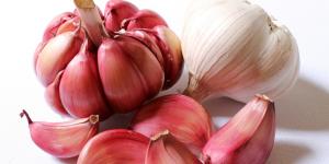 two garlic pieces