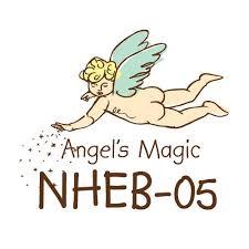 Angel's Magic Shampoo and Bath
